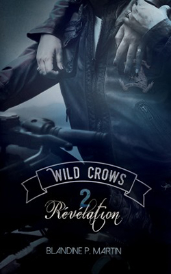 wild-crows-02