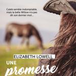 Une_promesse_dans_les_Rocheuses-01