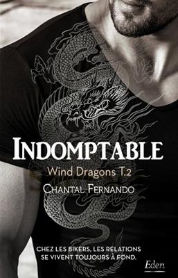wind-dragons-02
